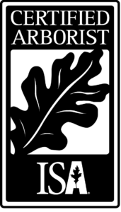 ISA Certified Arborists On Staff